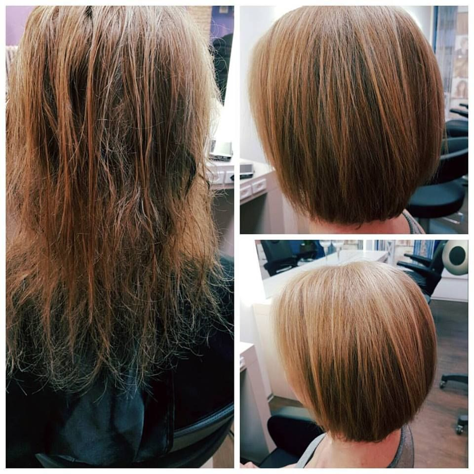 color-and-cut